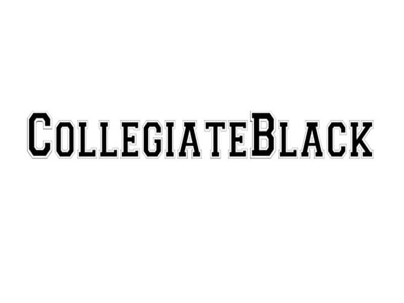 Collegiate Border FLF Font Download