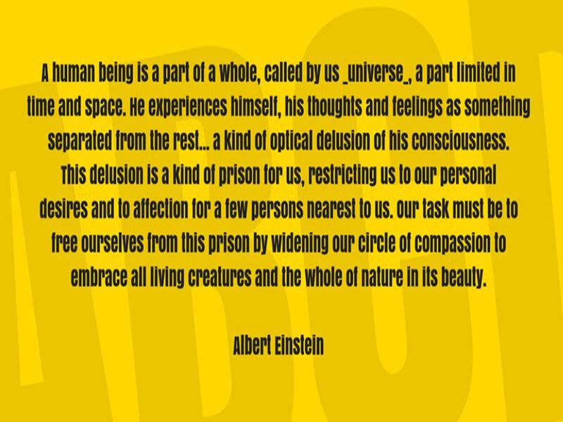Einstein Lesson Anton Font