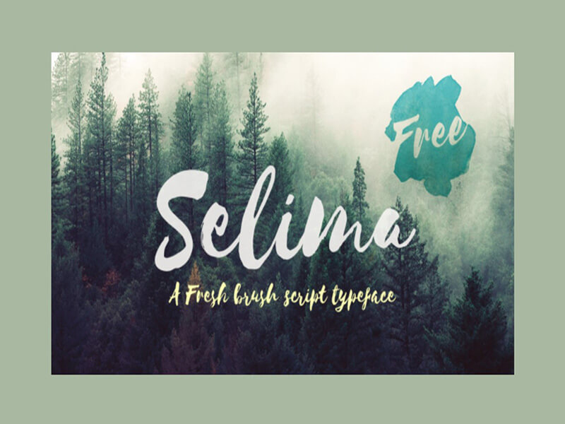Selima Font Family Free Download