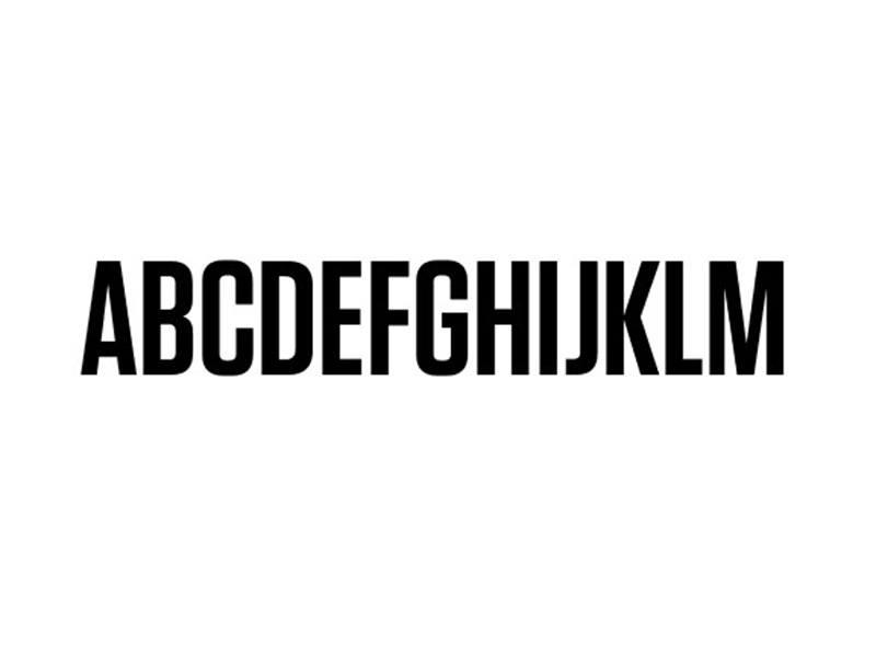 Tungsten Font Family Download