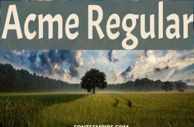 Acme Regular Font Family Free Download