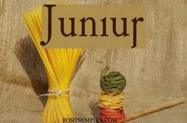 Junius Font Family Free Download