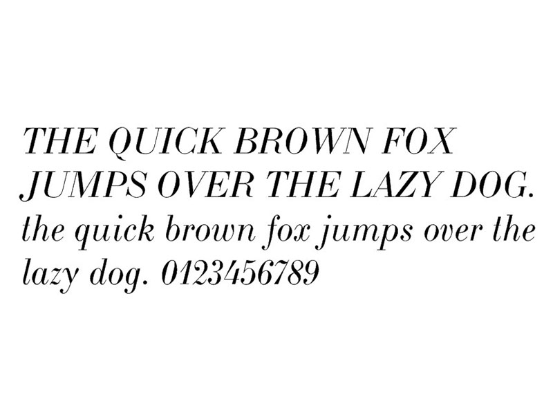 Lakers Font Family Download