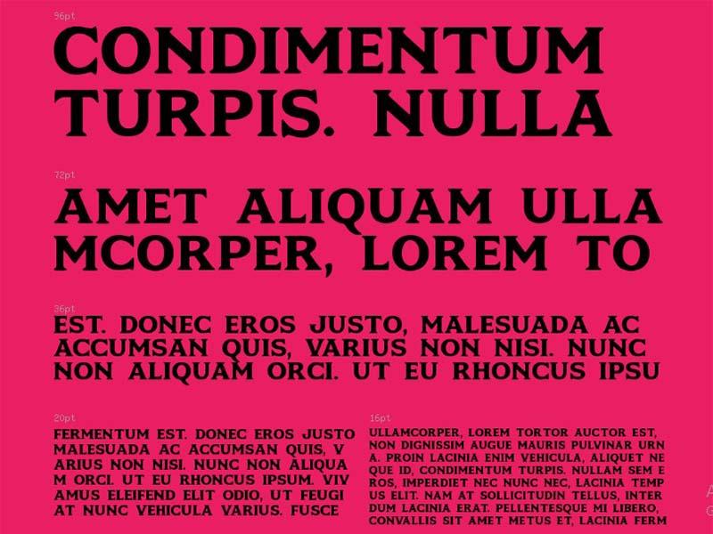 Motlow Font Free Download