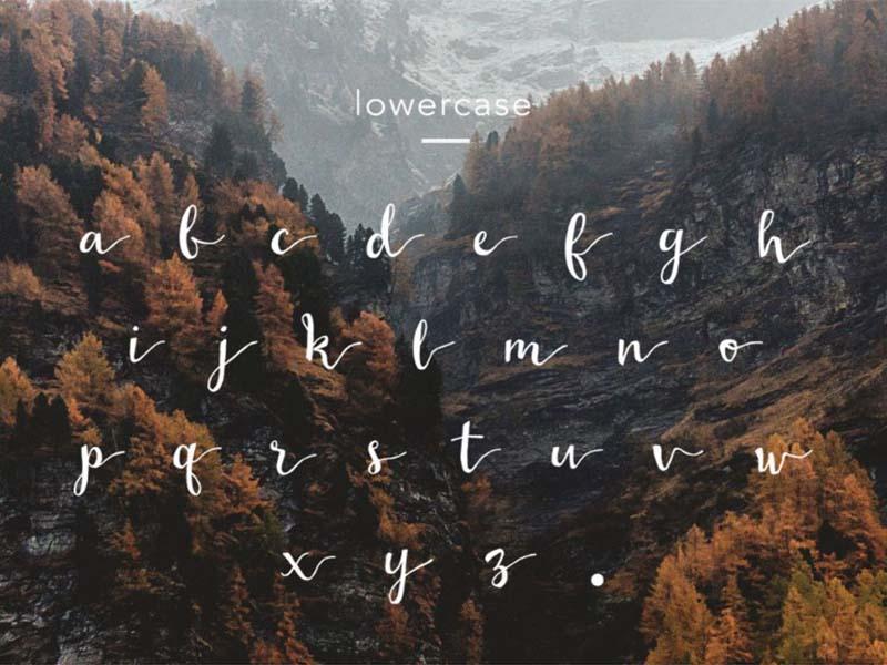 Wildera Font Free Download