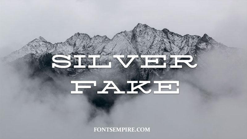 Silverfake Font Family Free Download