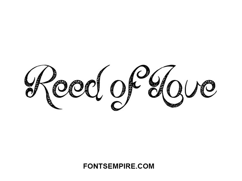 Reed Of Love Font Family Free Download