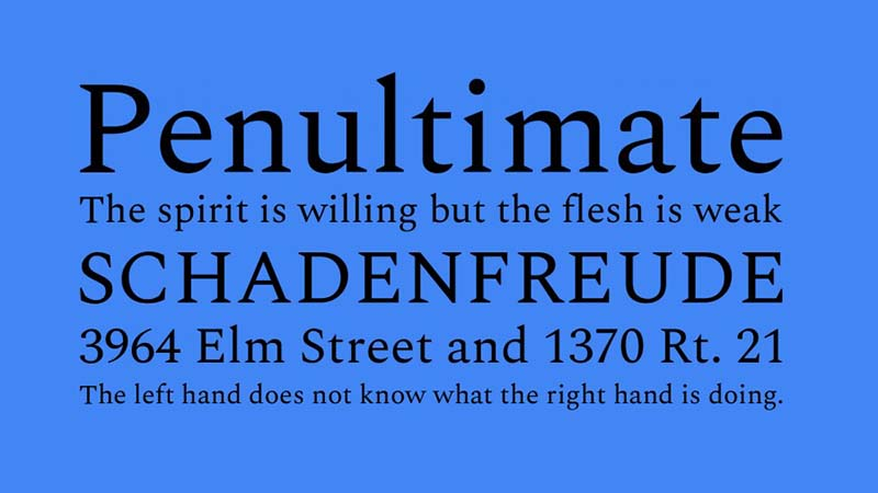 Spectral Font Family Download