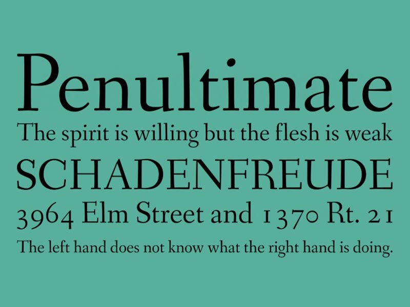 Fanwood Text Font Family Download