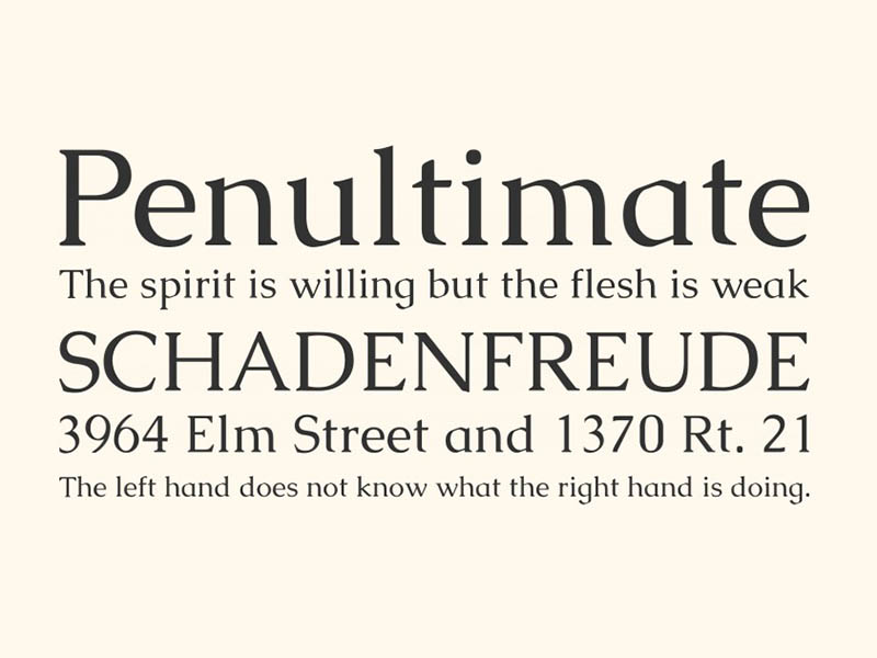 Caudex Font Free Download