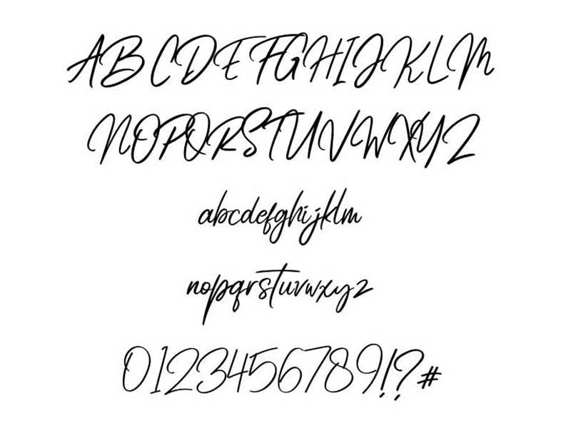 Radicalis Font Family Download