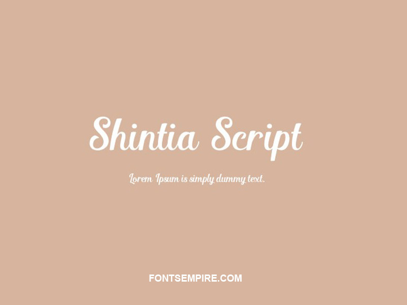 Shintia Script Font Family Free Download
