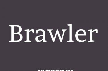 Brawler Font Family Free Download