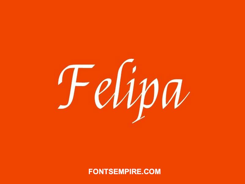 Felipa Font Family Free Download