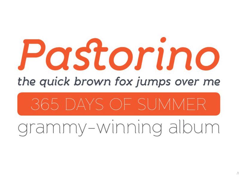 Banda Font Family Download