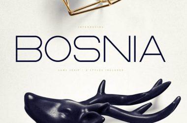 Bosnia Font Family Free Download