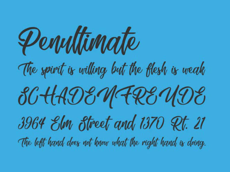 Skating Move Font Family Download