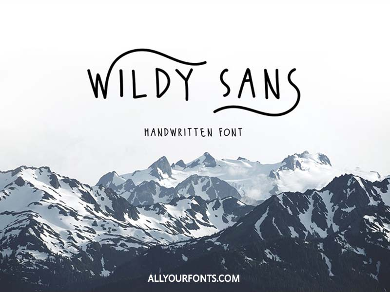 Wildy Sans Font Family Free Download