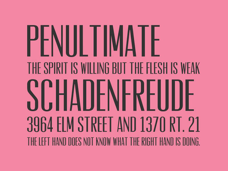 Vevey Font Family Download